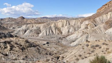 Photo of Tour por el desierto de Tabernas en 4×4