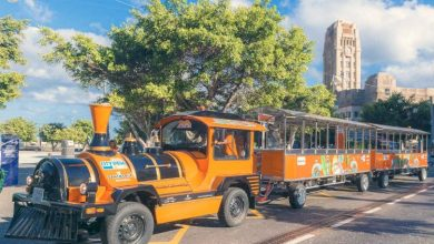 Photo of Autobús y tren turístico de Tenerife