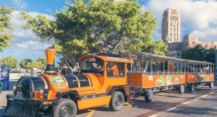 Autobús y tren turístico de Tenerife