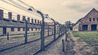 Photo of Excursión a Auschwitz-Birkenau