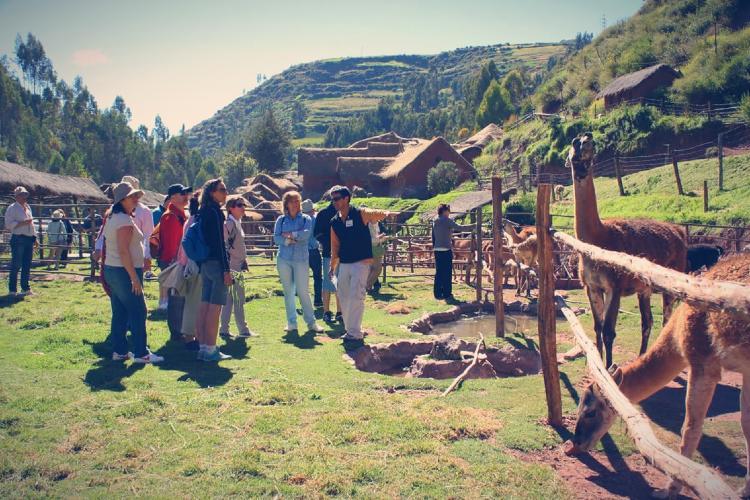 Tour por Cusco Awanacancha