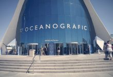 Photo of Oceanografic de Valencia