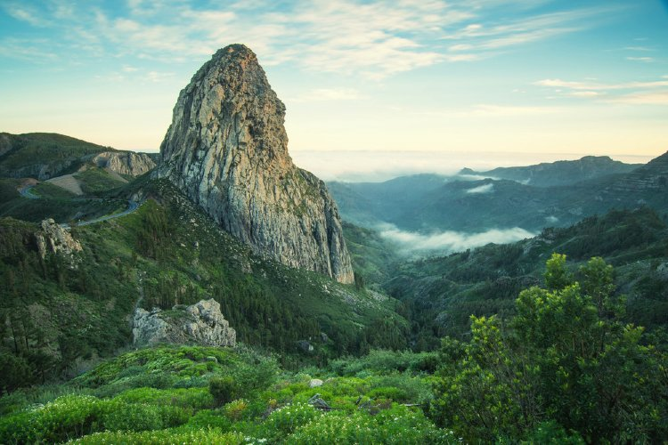 Los bosques más bonitos de España. Garajonay La Gomera