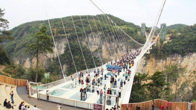 Photo of Los puentes más asombrosos del mundo
