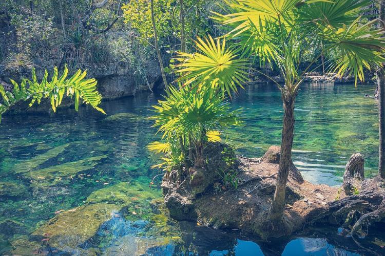 Cenote mexicano